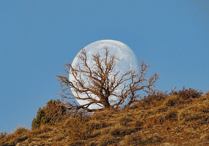 John Flaherty captured this photo of the full moon.