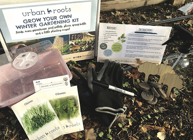 Reno-based nonprofit Urban Roots was founded in 2009.