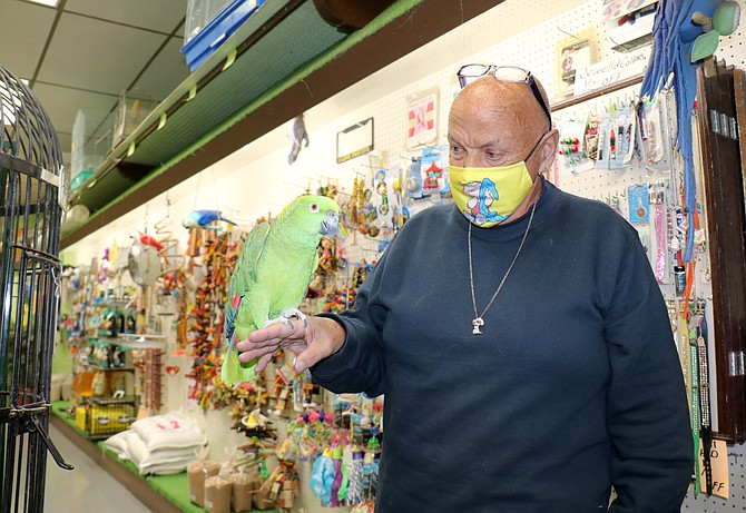 Linus McKibbin, owner of Pettin Place, holds a yellow-naped Amazon parrot at his pet store in Reno's Midtown in Fall 2020.