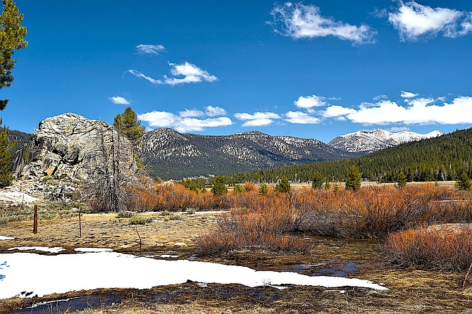 There was still a little snow on the ground near Blue Lakes Road in Alpine County.