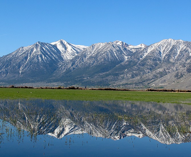 Jobs Peak is reflected in a flooded field along Genoa Lane on Tuesday morning.