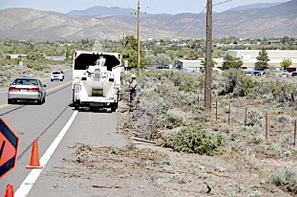 A fuel reduction crew works along Jacks Valley Road.