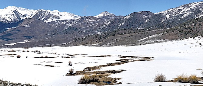 At the foot of the Sweetwater Mountains, the curving Swauger Creek runs through Ullman Ranch, providing pasture for cattle and habitat for wildlife.