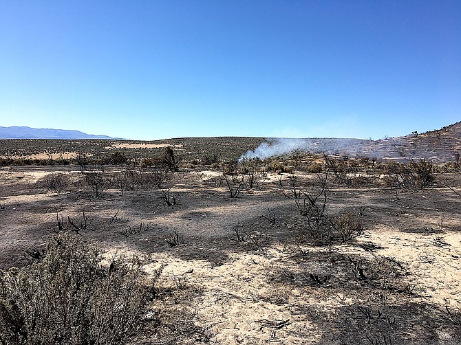 The charred remains of rabbit and buck brush west of Jacks Valley Elementary School as firefighters respond to the last smoke.