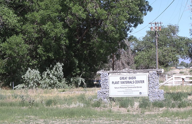 The U.S. Department of Agriculture Natural Resources Conservation Service's Great Basin Plant Materials Center is located in Fallon.