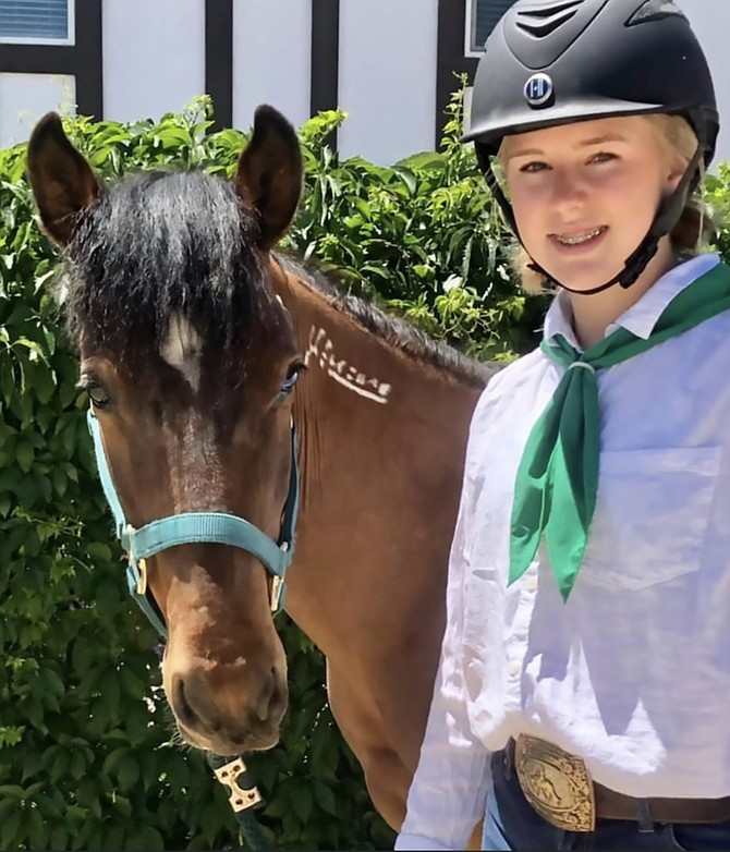 """Photo provided by UNR Extension 4-H member Alexis M. shows off """"Vinnie,"""" who will be up for adoption July 31 as part of the halter-started Wild Horse & Burro Event and Adoption Auction."""