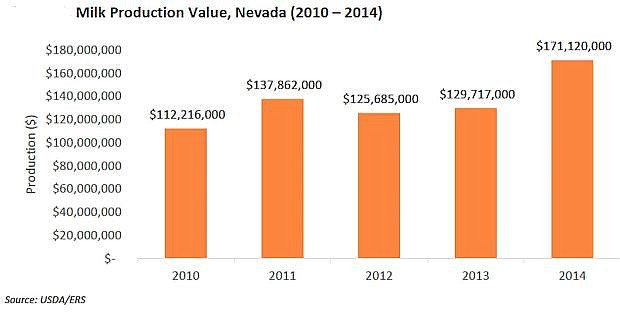 Milk production in Nevada has grown by 33 percent over the past decade, to 690 million pounds in 2014. Nevada's dairy and milk production in 2014 was estimated at $170 million, or 28 oercent of the total Nevada livestock production.