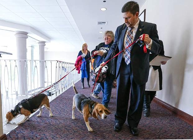 Nevada Sen. Mark Manendo, D-Las Vegas, enters the Legislative Building in Carson Cit on Tuesday with rescue beagles Dean and Luke. Manendo introduced a bill Tuesday that would require labratories that conduct research on dogs and cats to put the animals up for adoption after the study work.