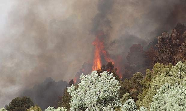 A wildland fire burned more than 4,500 acres almost one year ago east of Fallon.