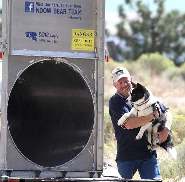 Carl Lackey smiles and praises 5-month-old Dazzle during a bear training session. Lackey used Dazzle to coax a 500 pound bear out of the trap during a release on Kingsbury Grade on Monday.