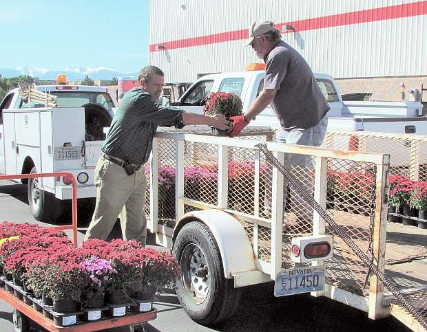 Costco General Manager Bob Tote assists Carson City Parks and Recreation employee Steve Crawford with loading 900 1-gallon multi-color mum plants to beautify the downtown and create a splash of color to the medians and other areas that could use a bit of color.  Carson City Parks and Recreation was the recipient of the donation and will be planting the flowers this week for residents and visitors to enjoy.