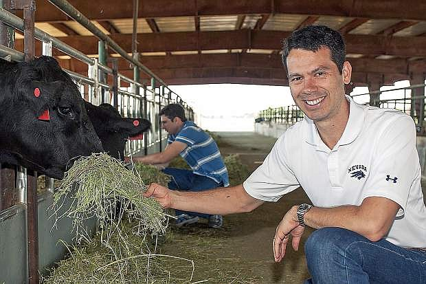 Antonio Faciola - Animal Nutritionist