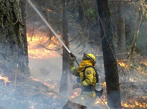 A firefighter waters down a tree as flames approach a containment line, while fighting the King fire near Fresh Pond, Calif., Thursday, Sept. 18, 2014. Authorities arrested Wayne Allen Huntsman, 37, Wednesday and has charged him with deliberately starting the Northern California wildfire that has burned more than 70,000 acres and is only 5 percent contained.(AP Photo/Rich Pedroncelli)