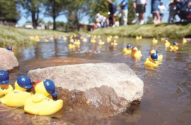 A few of the more than 600 ducks get stuck along the rocks at the Duck Races at Lampe Park Sunday. Proceeds for the race went to the Food Closet. Photo by Brian Corley