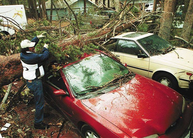 Photo by Jim Grant, Nevada Appeal News ServiceWhile waiting for a tree remover, Luis Ramirez clears broken branches from a car he borrowed from a friend.