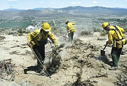 Fire crews work to spread debris across fire lines cut Tuesday to help fight the Hwy. 50 fire off Spooner Summitt.  Their efforts are part of rehabilitation of fire areas to help limit erosion and encourage revegitation.