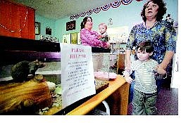 BRAD HORN/Nevada Appeal Charity the rat, from left, Minnette Schrader, her son Shawn DeLaBruere, 1, Jared DeLaBruere, 4, and owner of Charity Thrift Store Beverly Rolfe get ready Friday for the store's grand opening today.