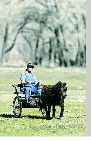 Cathleen Allison/Nevada Appeal Kathie Peterson of Dayton enjoys a ride with her 7-year-old gelding miniature horse, Happy, recently.