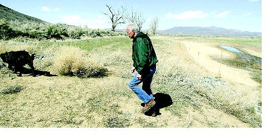 BRAD HORN/Nevada Appeal Gary Gumienny, ranch foreman for the Silver Saddle Ranch, walks through the wetland area with his dog Bucky on Friday afternoon. Gumienny said the area will be submerged in water sometime in April.