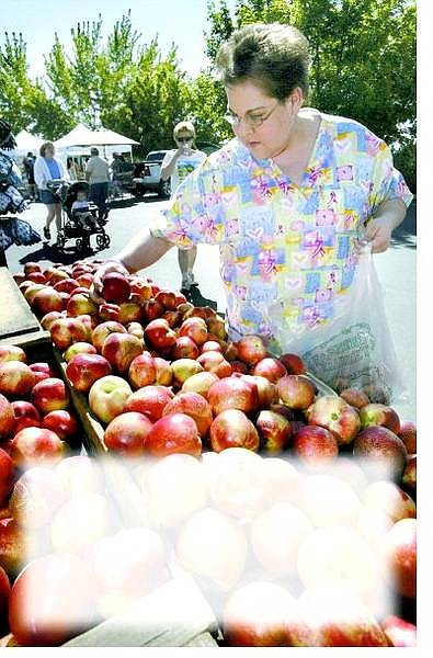 Deborah Sharman of Gardnerville sorts through white nectarines at the farmers market at Lampe Park in Gardnerville on June 1.  Cathleen Allison/Nevada Appeal
