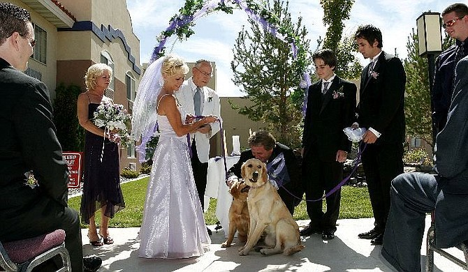 Brian Sokol/Nevada Appeal The wedding of Suzanne Neves and Todd Boerner, this Sunday at the Pinion Plaza Casio, took an unexpected turn when it was announced that the couples' two Golden Retrievers, Viking of Tahoe and Lady Love Nevaeh, were also to be joined in the holy bonds of (canine) wedlock.