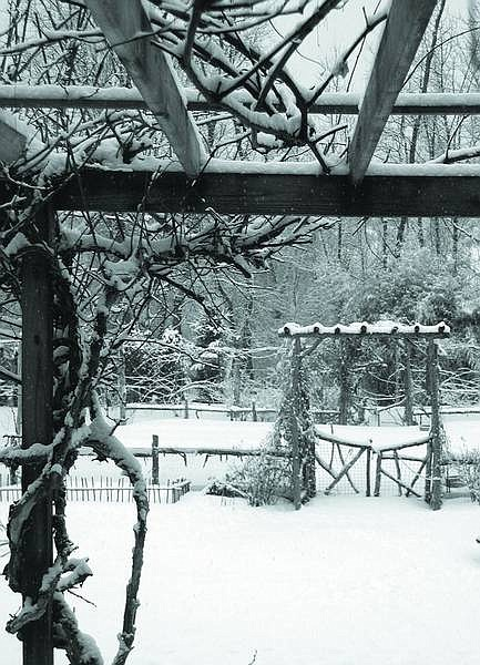 Lee Reich/Associated Press A quick and easy first step to creating a pleasant winter scene outdoors is to tidy up. Put away buckets and gardening tools, straighten akimbo posts, and cut back old flower stalks.