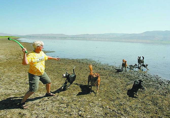 BRAD HORN/Nevada AppealJenny Hass throws a tennis ball to the splash dogs at Washoe Lake last week. The Splash Dogs will be part of the Nevada State Fair, which is opening Wednesday.