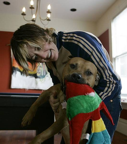 Eric Risberg/Associated Press Leslie Nuccio with Hector, a pit bull that was seized from Michael Vick's property, is seen at her home in the San Francisco Bay area Wednesday.