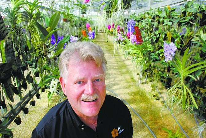 Alan Diaz/Associated Press Robert Fuchs, president of R.F. Orchids, is shown at one of his orchid greenhouses in Homestead, Fla. R.F. Orchids has received many awards from the American Orchid Society.