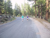 Submitted PhotoA pair of walkers enjoy the forest scenery and sounds along Clear Creek Road.