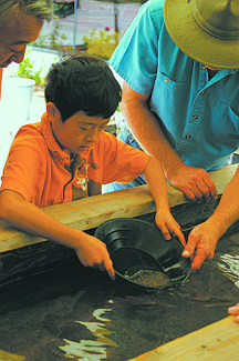 Courtesy Nevada State MuseumA young visitor to a previous Carson City Mint Coin Show tries his hand at gold panning, a featured activity at the annual event that starts today and continues on Saturday. There will also be coin and collectibles booths, food, demonstrations of Coin Press No. 1 and raffles.