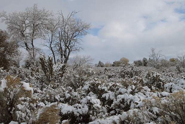 John Petroulis took this photo following a recent storm.