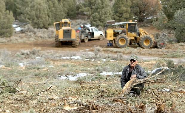 Tom Bettencourt is concerned about a tree-thinning operation going on along Sunrise Pass Road in the Pinenuts.
