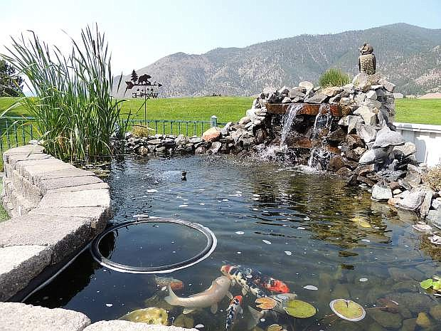 Melanie Miller's pond was on the tour in previous years. This year's backyard pond tour is set for July 12.