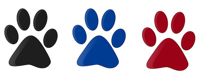Three colorfull paw prints isolated with white background.