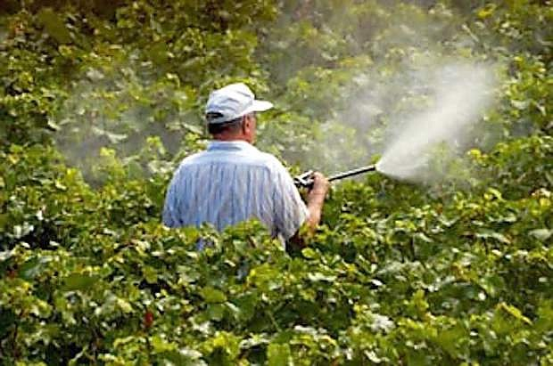 Pesticide products can be dangerous if applied incorrectly.