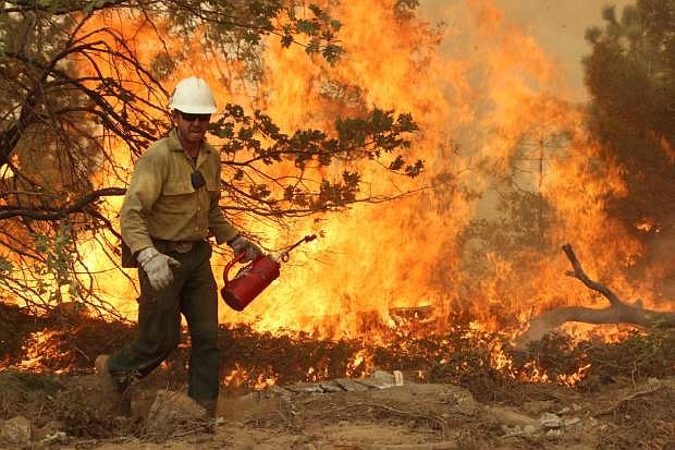 This Friday, Aug. 30, 2013 image provided by the U.S. Forest Service shows a member of the BLM Silver State Hotshot crew using a drip torch to set back fires on the southern flank of the Rim Fire in California. The blaze has scorched 343 square miles of brush, oaks and pines and 11 homes, as of Saturday Aug. 31, 2013. (AP Photo/U.S. Forest Service)