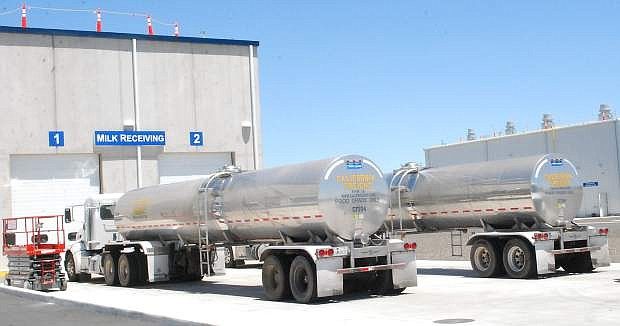 Tankers wait to unload their milk on Tuesday at the new Dairy Farmers of America milk ingredient processing plant south of Fallon.
