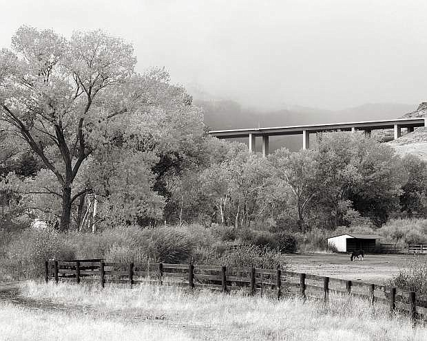 Second place, Washoe Valley, by Marylou Schlinder