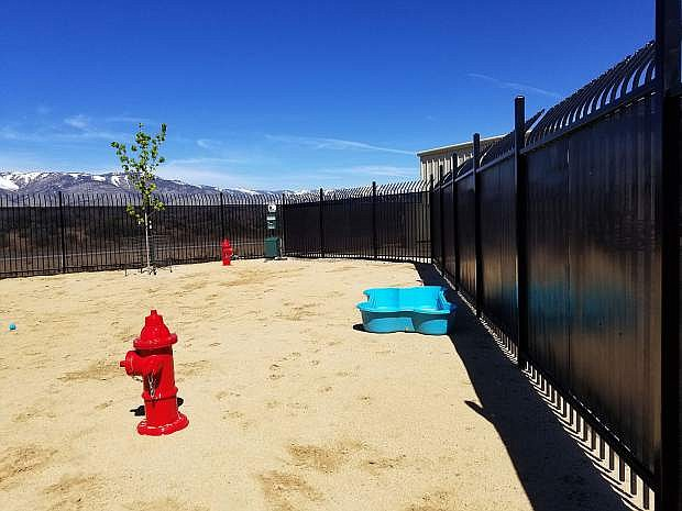 The new playground at the Carson City Animal Shelter.