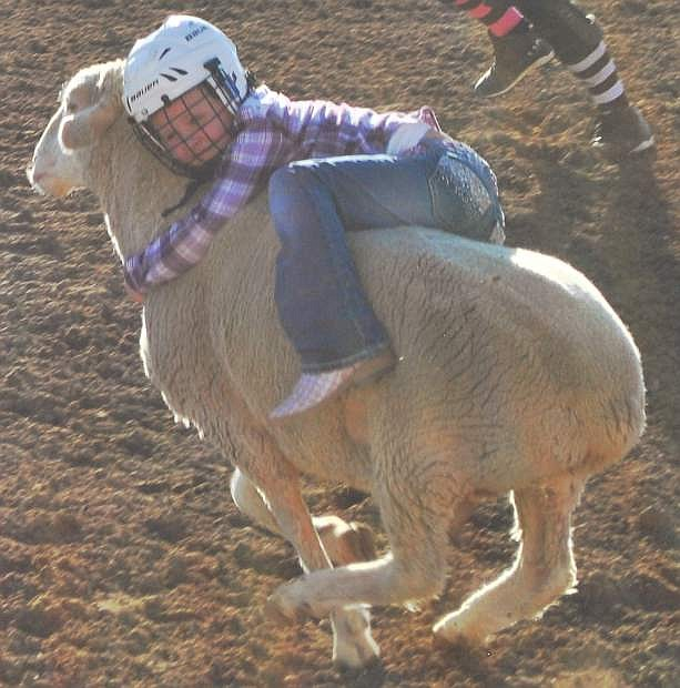 As part of the junior rodeo, children competed in the mutin busting competition, riding sheep.