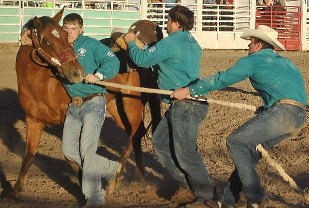 David Gregory, right, along with teammates Phillip Wurdinger and Dakota Loins gang up on their horse