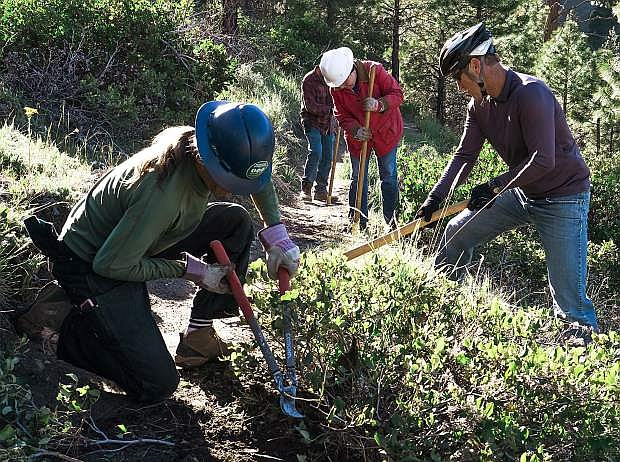 Muscle Powered volunteers work on a section of Ash Canyon trails above Carson City, Nev., on Friday, May 12, 2017. Photo by Cody Blue/Nevada Photo Source