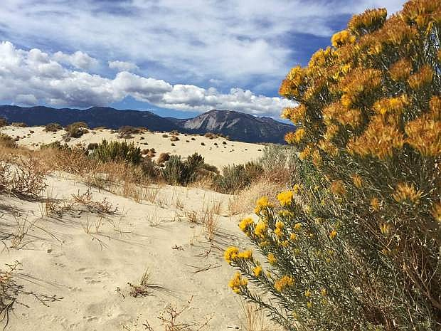 Washoe Lake State Park is the site of several events planned for August.