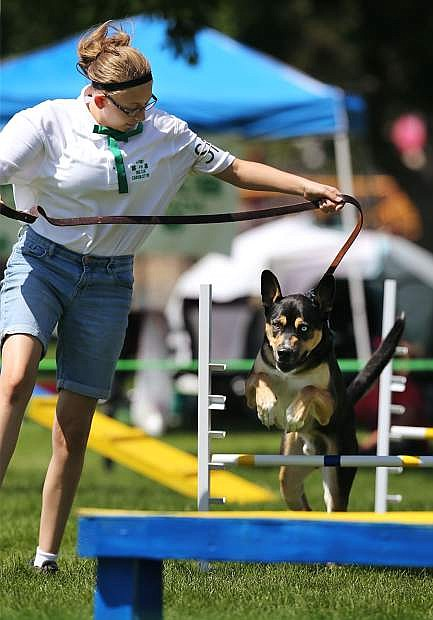 4-H member Morgan Craghill, of Carson City, and her dog Boris run the dog agility course at the Carson City Fair at Fuji Park on Tuesday, July 25, 2017. For more information about the fair, which run through Sunday, go to carsoncitynvfair.com. Photo by Cathleen Allison/Nevada Photo Source