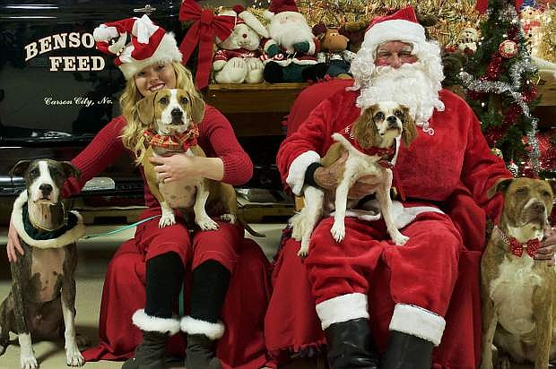 Carson Animal Services Initiative is holding its annual Pictures with Santa fundraiser on Dec. 9, from 10 a.m. to 2 p.m., at Benson's Feed and Tack, 2750 Highway 50.