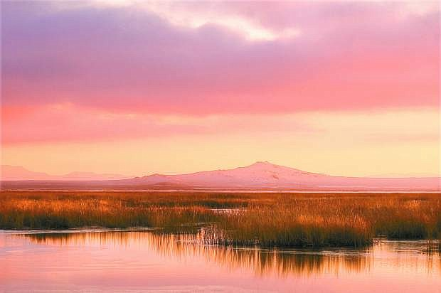 Kim Lamb/LVN A setting sun bathes the Stillwater Wildlife Refuge in the warm glow of days end.