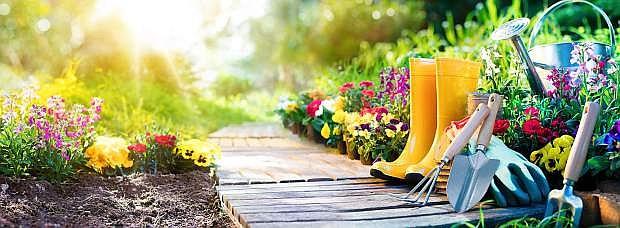 Set Of Tools For Gardener And Flowerpots In Garden