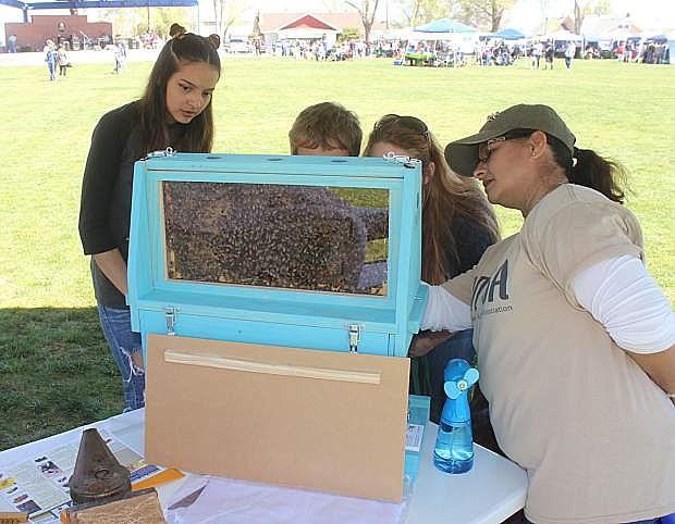 Beekeeper Deborah Quackenbush of Northern Nevada Beekeepers Organization shows students her display.