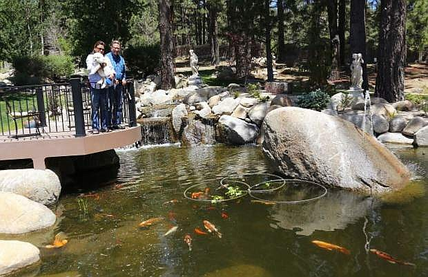 A whale shaped boulder breaches through the center of a five-foot deep pond at the home of Washoe Valley residents Tim and Christina Stevens which was featured during last year's pond tour.